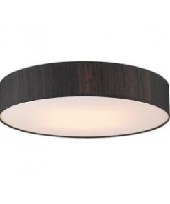 Modern Flush Lighting